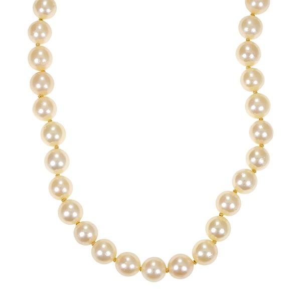 Perlenkette 585 / Gelbgold L 46 cm Federring weiss ZP Detailbild #1